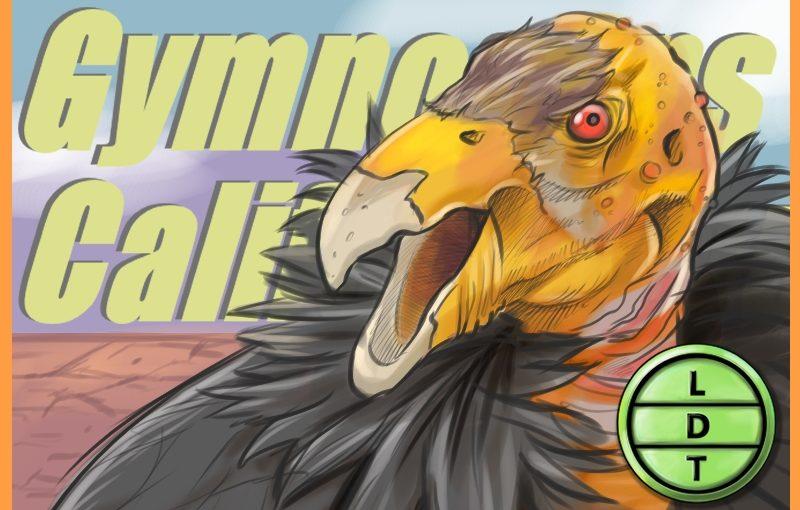 Episode 73 – California Condor: An Old Bord