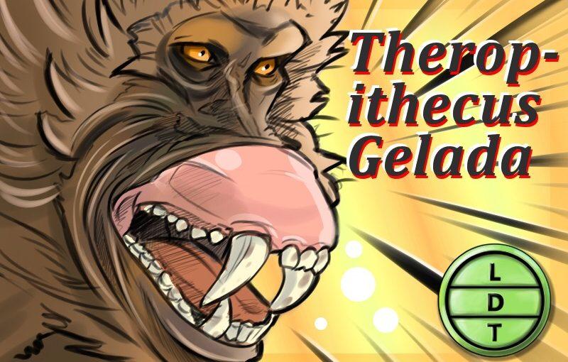 Episode 90 – Gelada Monkey: The Sneaky Monkey