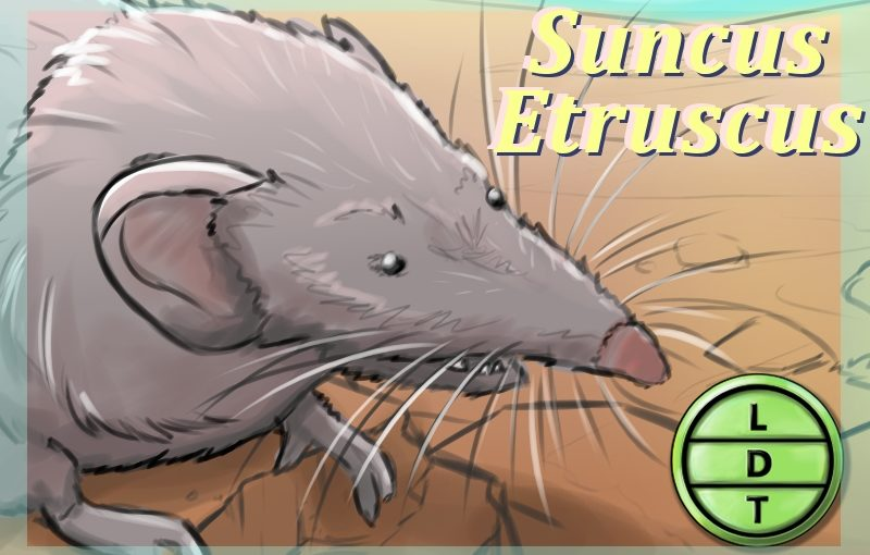 Episode 89 – Etruscan Shrew: A Rusted Shoe