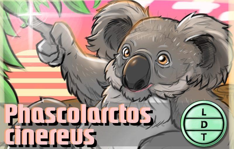 Episode 112 – Koala: The Pickiest Herbivore